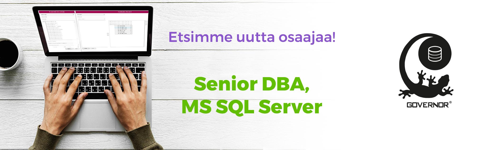 Senior DBA, Microsoft SQL Server